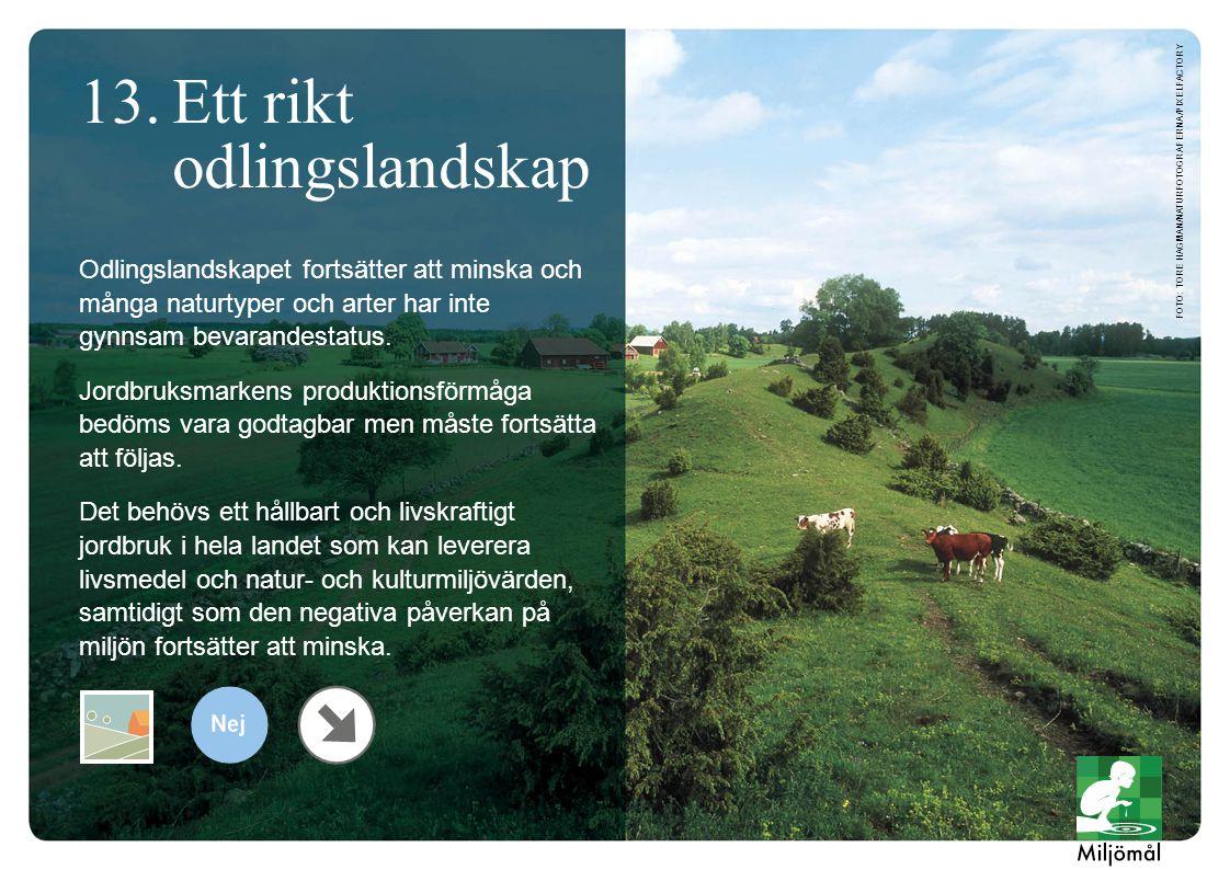 Odlingslandskapet fortsätter att minska och många naturtyper och arter har inte gynnsam bevarandestatus.