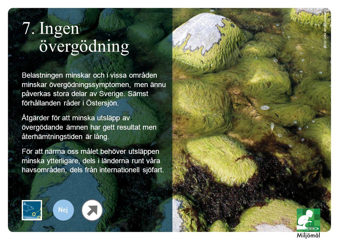Belastningen minskar och i vissa områden minskar övergödningssymptomen, men ännu påverkas stora delar av Sverige.