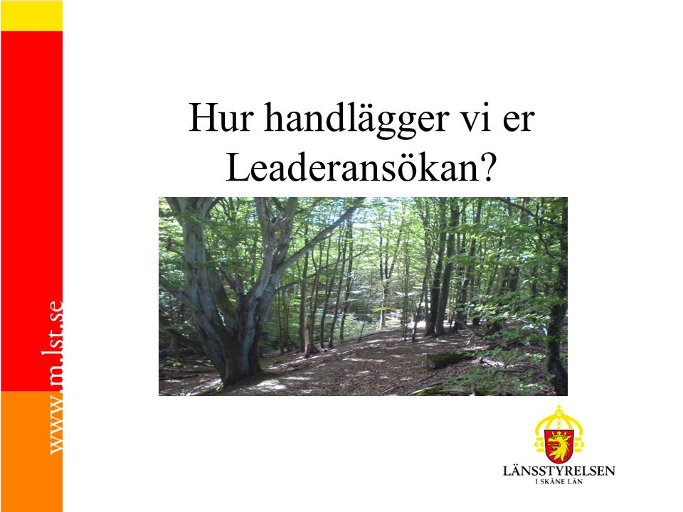 Hur handlägger vi er Leaderansökan?