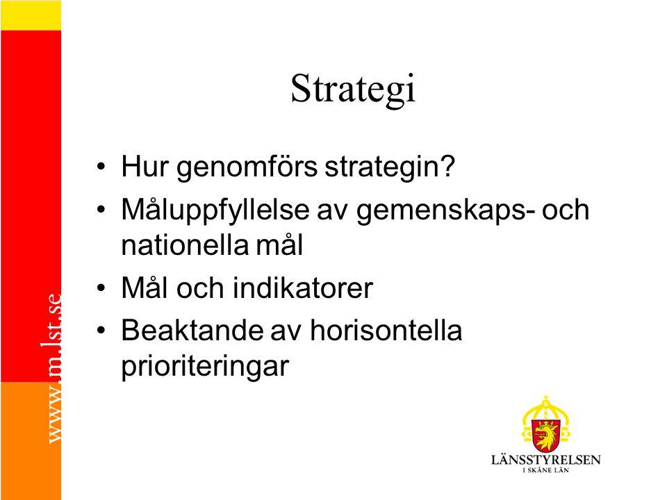 Strategi •H•Hur genomförs strategin? •M•Måluppfyllelse av gemenskaps- och nationella mål •M•Mål och indikatorer •B•Beaktande av horisontella prioriter
