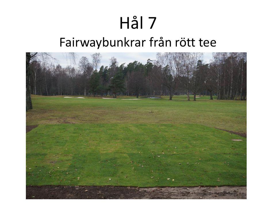 Hål 7 Fairwaybunkrar från rött tee