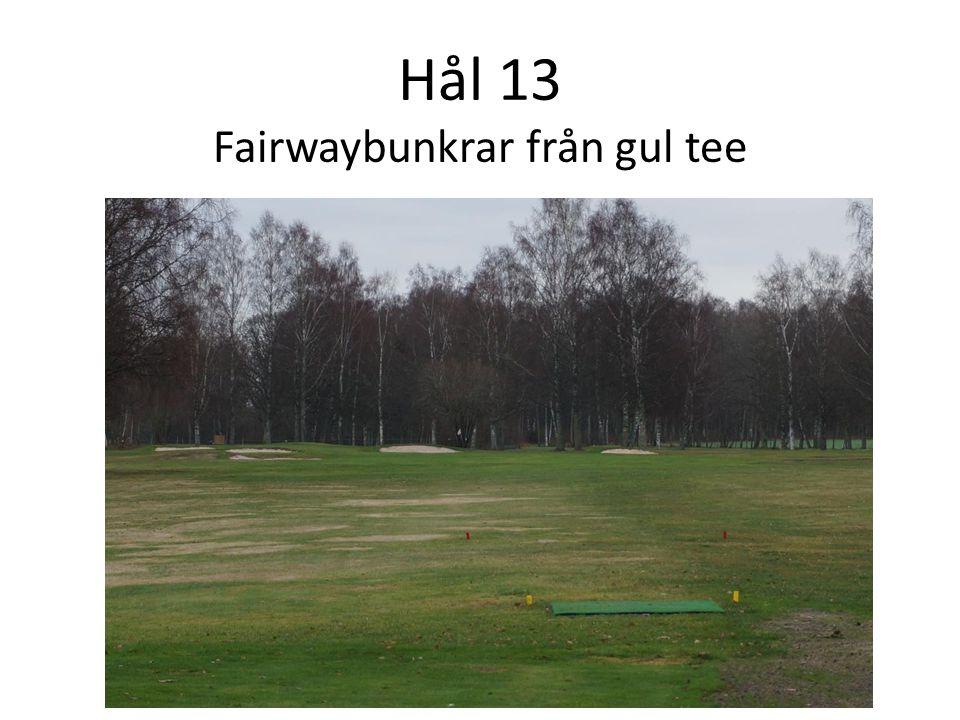 Hål 13 Fairwaybunkrar från gul tee