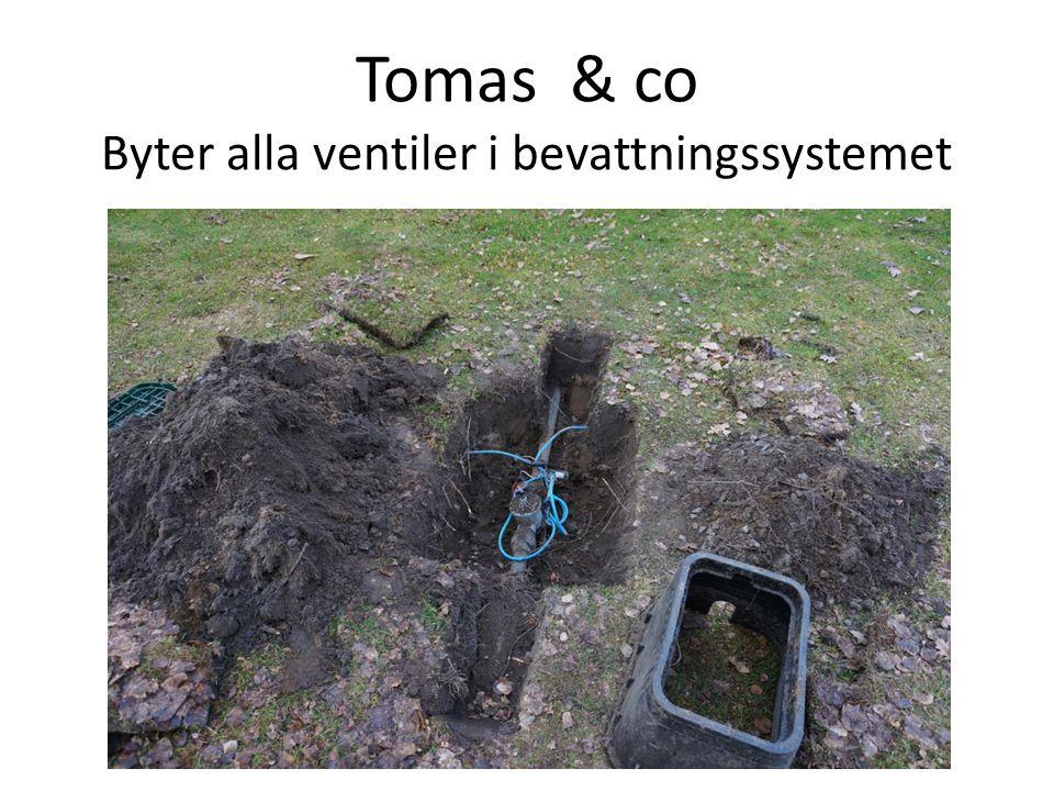 Tomas & co Byter alla ventiler i bevattningssystemet