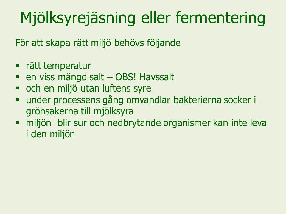 Mjölksyrejäsning eller fermentering För att skapa rätt miljö behövs följande  rätt temperatur  en viss mängd salt – OBS.