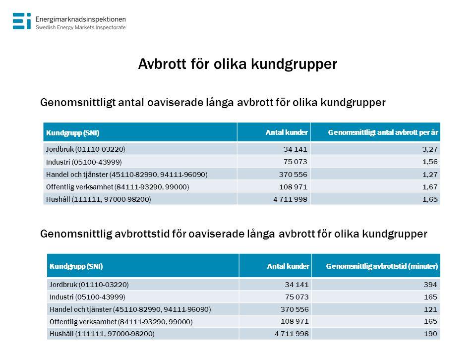 Kundgrupp (SNI) Antal kunderGenomsnittligt antal avbrott per år Jordbruk (01110-03220) 34 1413,27 Industri (05100-43999) 75 0731,56 Handel och tjänste