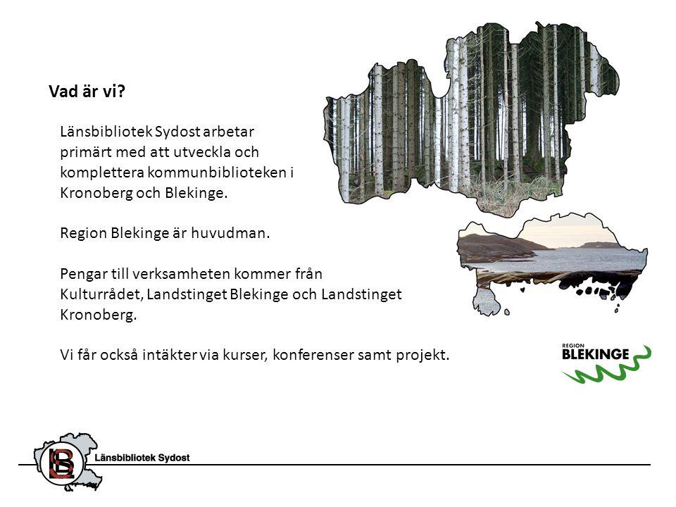 Länsbibliotek Sydost arbetar primärt med att utveckla och komplettera kommunbiblioteken i Kronoberg och Blekinge. Region Blekinge är huvudman. Pengar