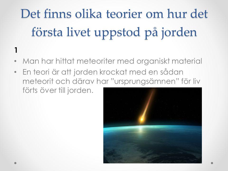 Det finns olika teorier om hur det första livet uppstod på jorden 1 • Man har hittat meteoriter med organiskt material • En teori är att jorden krocka