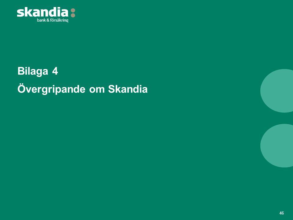 Bilaga 4 Övergripande om Skandia 46