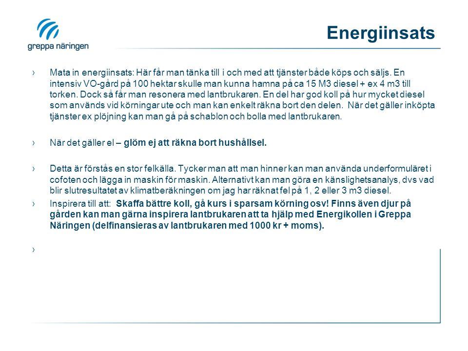 Energiinsats ›Mata in energiinsats: Här får man tänka till i och med att tjänster både köps och säljs. En intensiv VO-gård på 100 hektar skulle man ku