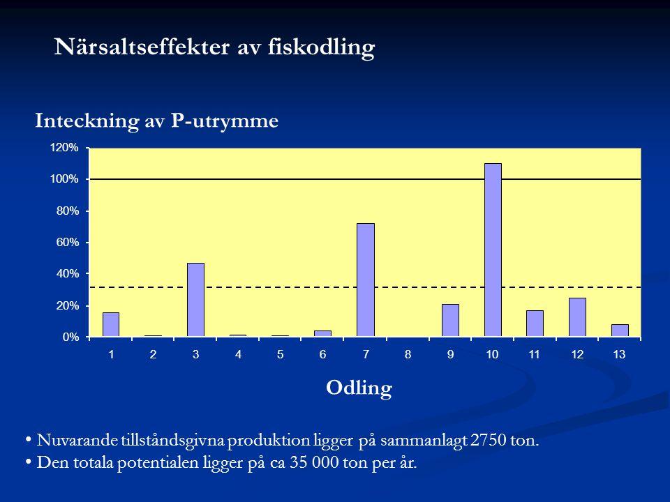 Närsaltseffekter av fiskodling Inteckning av P-utrymme Odling • Nuvarande tillståndsgivna produktion ligger på sammanlagt 2750 ton.