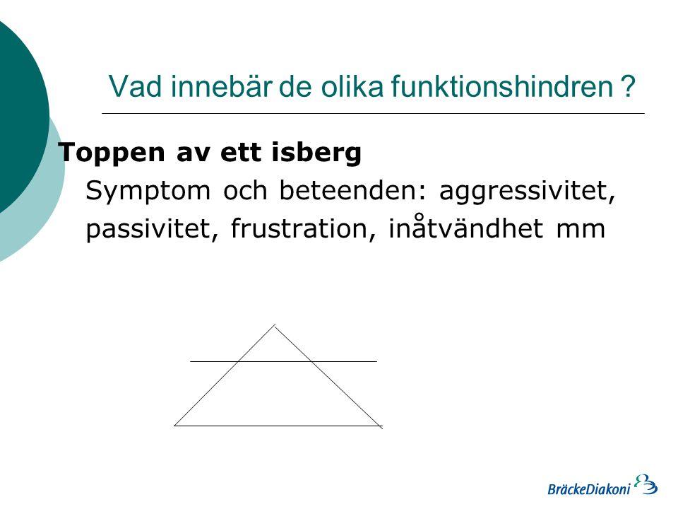 Vad innebär de olika funktionshindren .