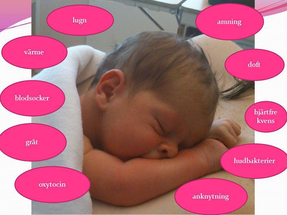  Kolostrum, råmjölk - stor variation i mängd, kommer droppvis första dygnen, bildas tidigt under graviditeten, gul, genomskinlig, trögflytande, innehåller antikroppar och näring  Handmjölkning - visa alla  Napp - undvika första dygnen  Handhygien