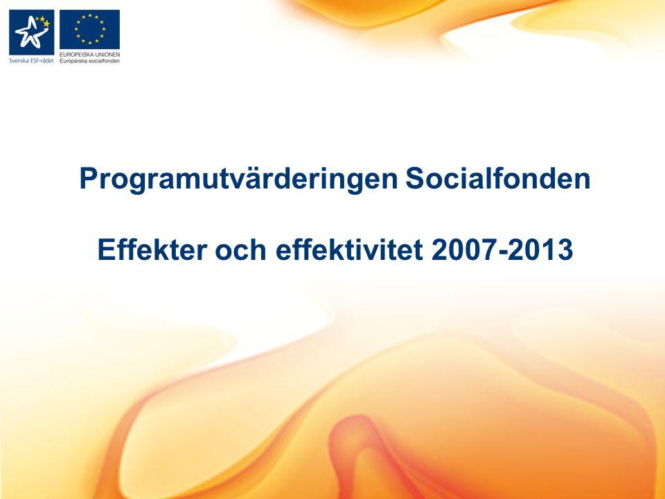 Programutvärderingen Socialfonden Effekter och effektivitet 2007-2013