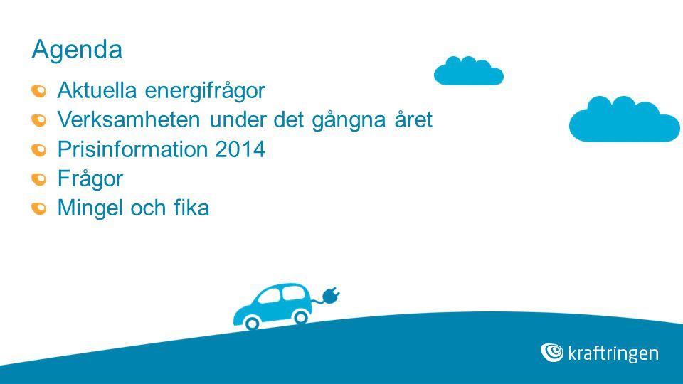 Agenda Aktuella energifrågor Verksamheten under det gångna året Prisinformation 2014 Frågor Mingel och fika