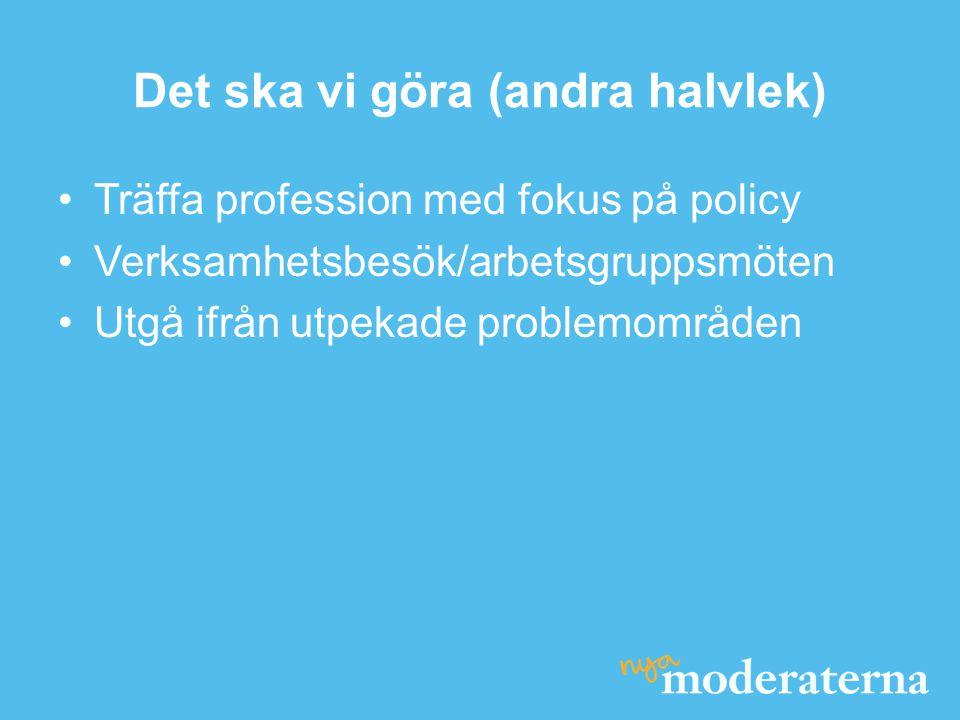 Det ska vi göra (andra halvlek) •Träffa profession med fokus på policy •Verksamhetsbesök/arbetsgruppsmöten •Utgå ifrån utpekade problemområden