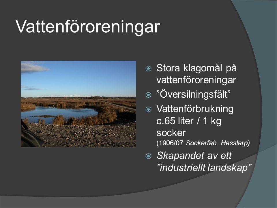 Vattenföroreningar  Stora klagomål på vattenföroreningar  Översilningsfält  Vattenförbrukning c.65 liter / 1 kg socker (1906/07 Sockerfab.