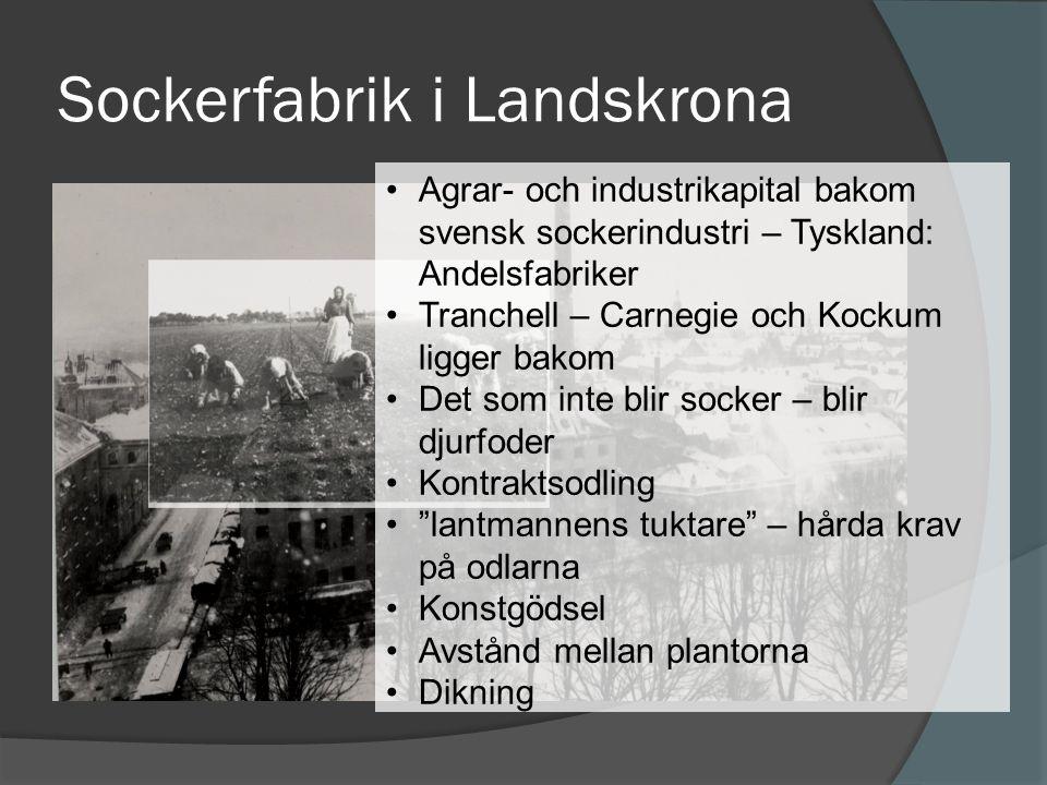 Sockerfabrik i Landskrona •Agrar- och industrikapital bakom svensk sockerindustri – Tyskland: Andelsfabriker •Tranchell – Carnegie och Kockum ligger b