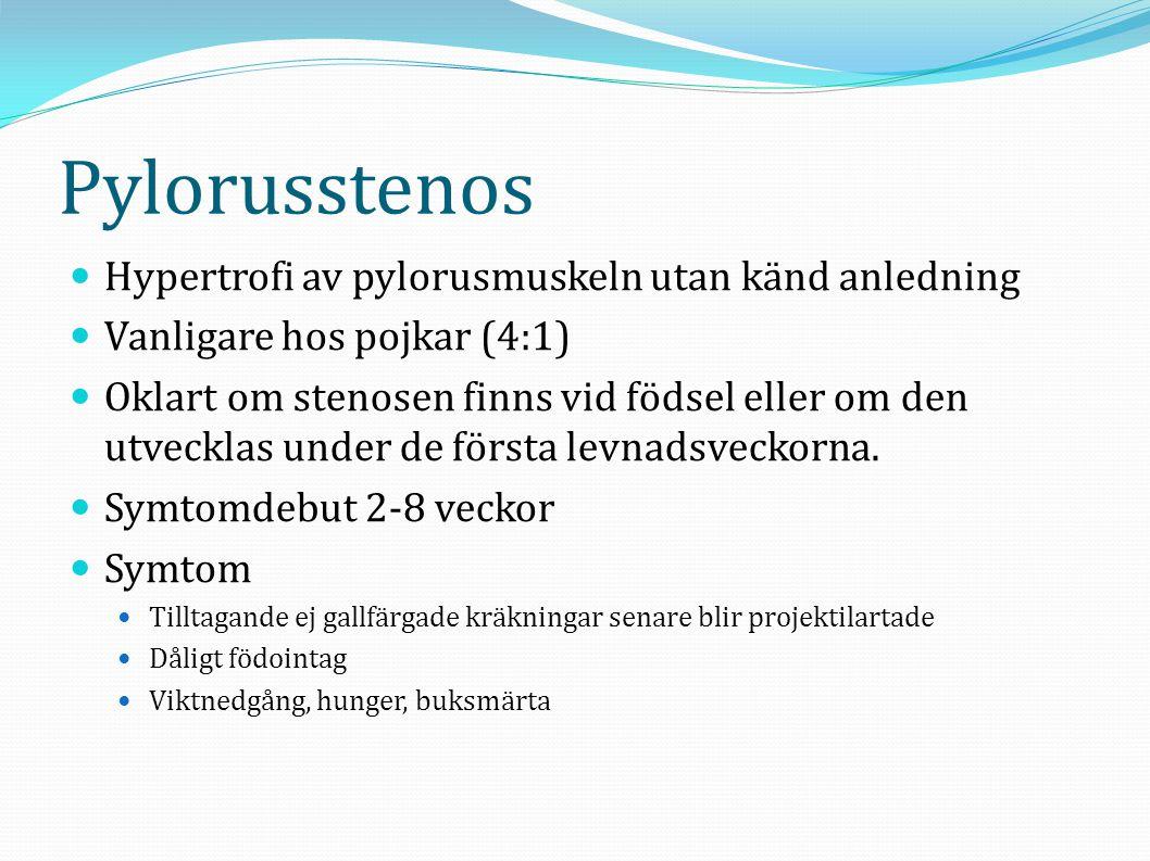 Pylorusstenos  Hypertrofi av pylorusmuskeln utan känd anledning  Vanligare hos pojkar (4:1)  Oklart om stenosen finns vid födsel eller om den utvec