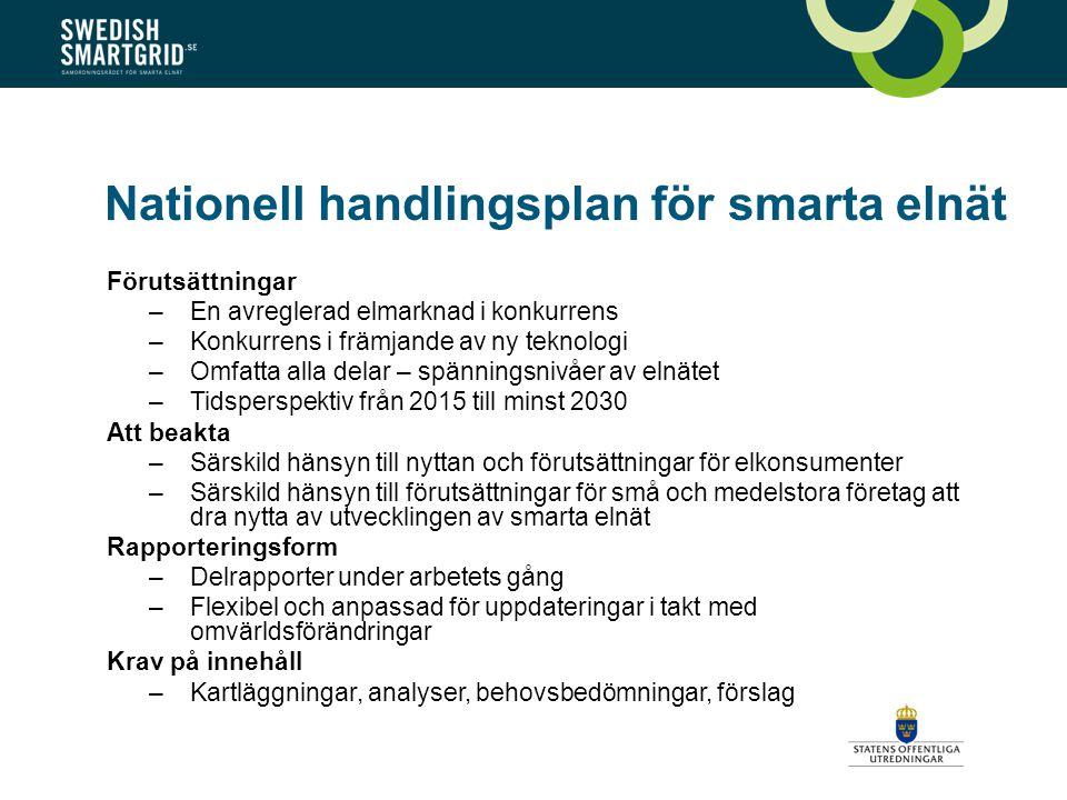 Nationell handlingsplan för smarta elnät Förutsättningar –En avreglerad elmarknad i konkurrens –Konkurrens i främjande av ny teknologi –Omfatta alla delar – spänningsnivåer av elnätet –Tidsperspektiv från 2015 till minst 2030 Att beakta –Särskild hänsyn till nyttan och förutsättningar för elkonsumenter –Särskild hänsyn till förutsättningar för små och medelstora företag att dra nytta av utvecklingen av smarta elnät Rapporteringsform –Delrapporter under arbetets gång –Flexibel och anpassad för uppdateringar i takt med omvärldsförändringar Krav på innehåll –Kartläggningar, analyser, behovsbedömningar, förslag
