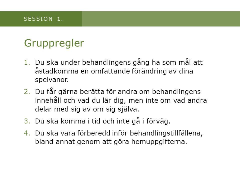 SESSION 1.Att fylla tomrummet efter spel • Ett problembeteende (t.ex.