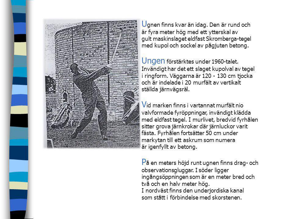 R ya tegelbruk hade en kort blomstringstid mellan 1880 och slutet av första världskriget, 1920. Bruket var kopplat till jordbruket Rya Gård som drevs