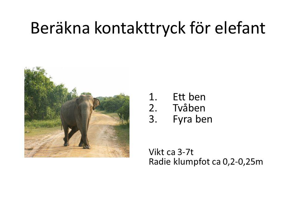 Beräkna kontakttryck för elefant 1.Ett ben 2.Tvåben 3.Fyra ben Vikt ca 3-7t Radie klumpfot ca 0,2-0,25m