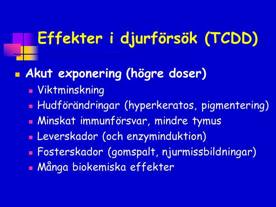 Effekter i djurförsök (TCDD)  Kronisk exponering  Cancer  Försämrat immunförsvar*  Förändrad könsutveckling*  Beteendeeffekter* *Känsligast vid exponering under fosterutvecklingen, effekterna uppträder senare.
