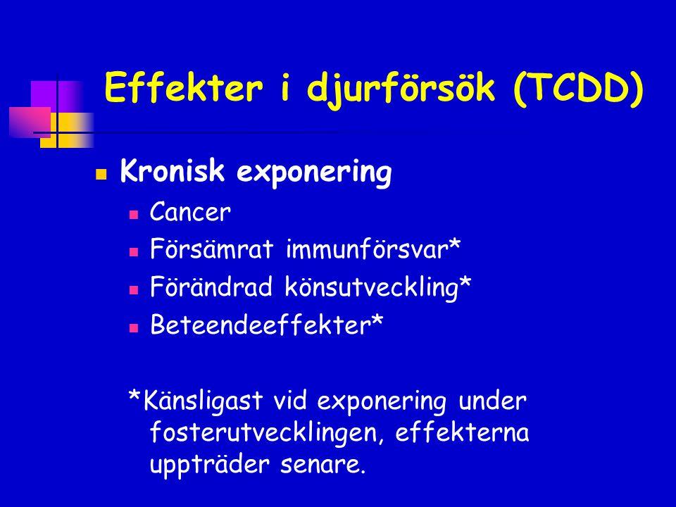 Effekter i djurförsök (TCDD)  Kronisk exponering  Cancer  Försämrat immunförsvar*  Förändrad könsutveckling*  Beteendeeffekter* *Känsligast vid e