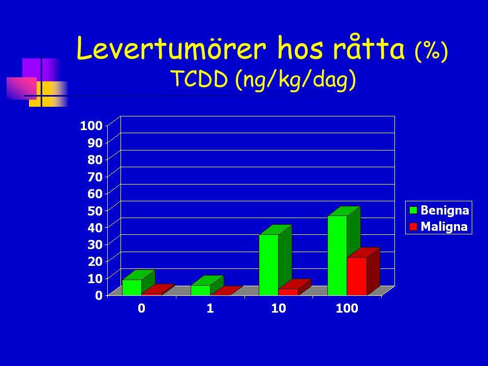 Levertumörer hos råtta (%) TCDD (ng/kg/dag)