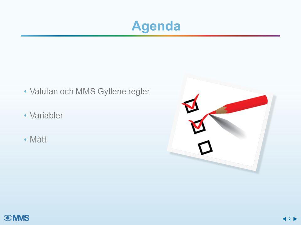 Agenda •Valutan och MMS Gyllene regler •Variabler •Mått 2