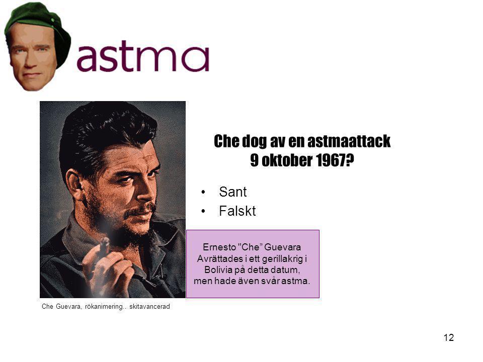 12 Che dog av en astmaattack 9 oktober 1967? •Sant •Falskt Ernesto