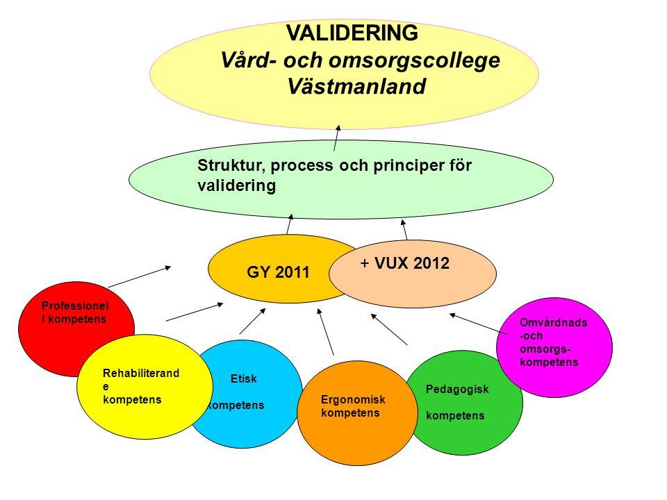 Professionel l kompetens Etisk kompetens Pedagogisk kompetens Omvårdnads -och omsorgs- kompetens Struktur, process och principer för validering GY 201