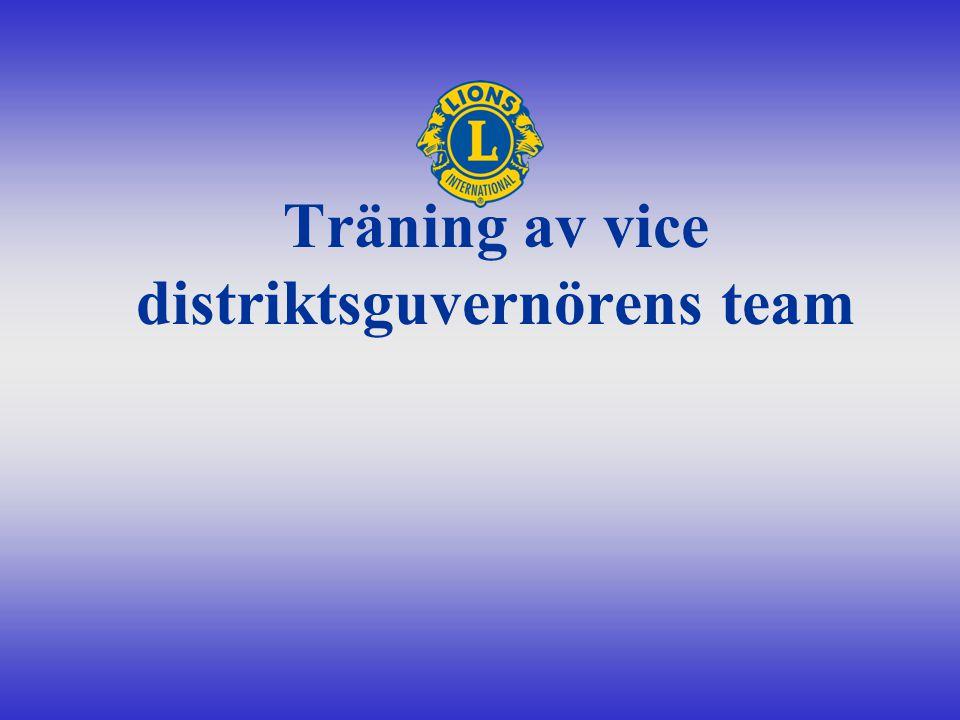 Träning av vice distriktsguvernörens team