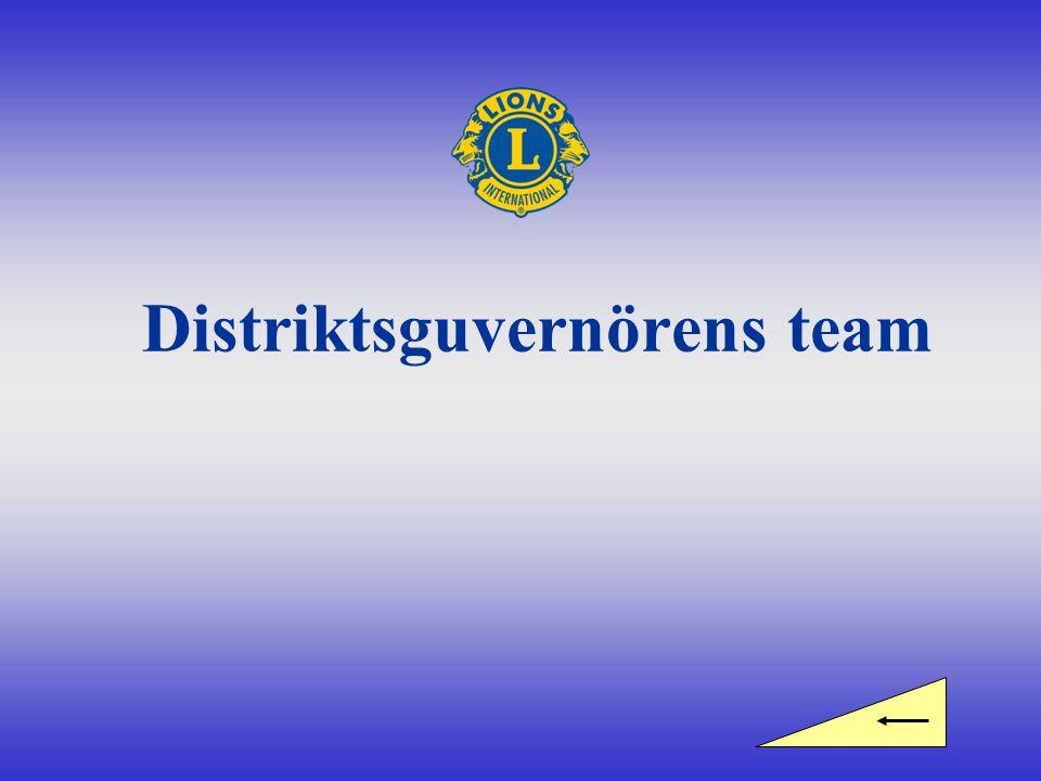 Distriktsguvernörens team