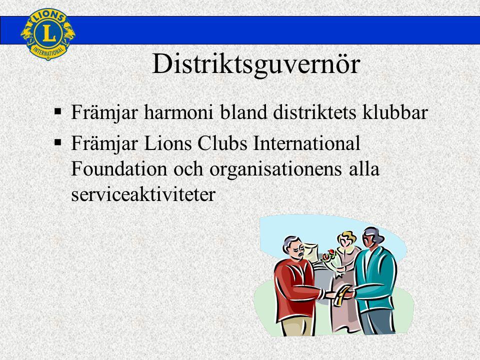 Distriktsguvernör  Främjar harmoni bland distriktets klubbar  Främjar Lions Clubs International Foundation och organisationens alla serviceaktiviteter