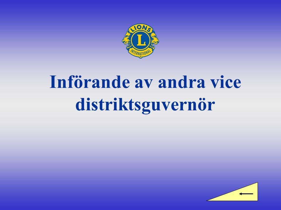 Införande av andra vice distriktsguvernör