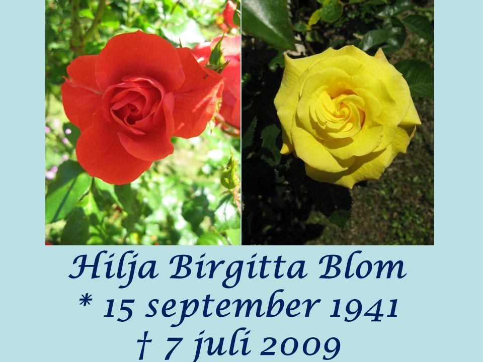 Hilja Birgitta Blom * 15 september 1941 † 7 juli 2009