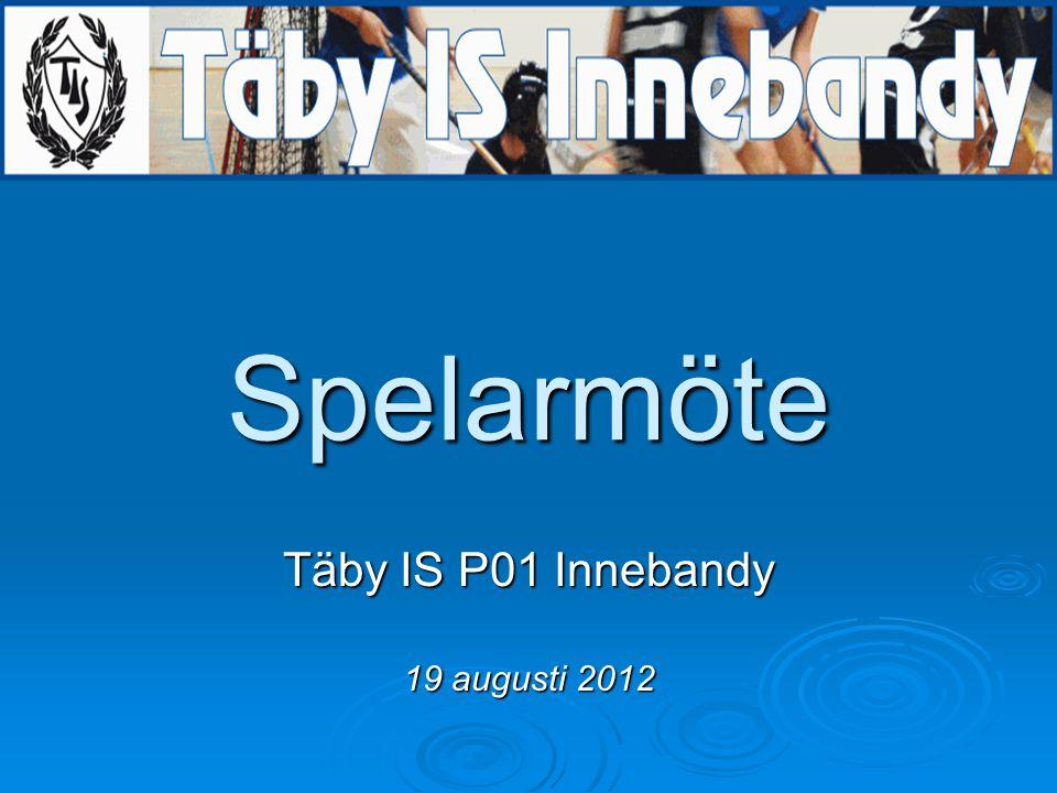 Spelarmöte Täby IS P01 Innebandy 19 augusti 2012