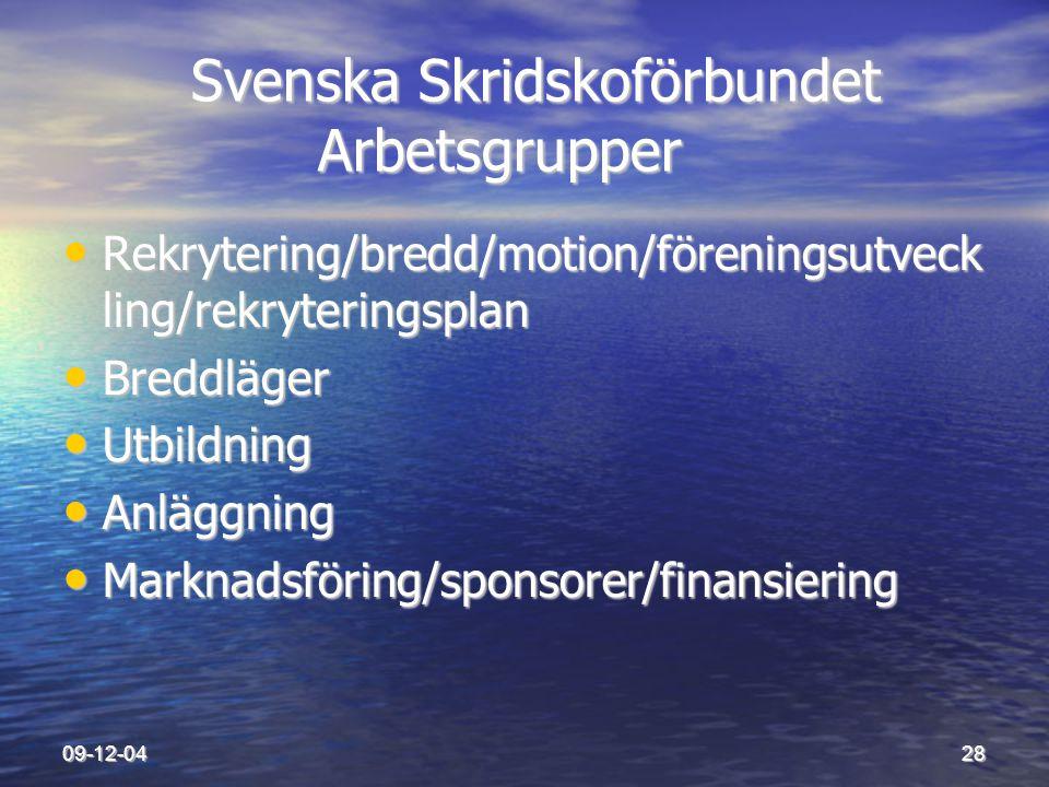09-12-0428 Svenska Skridskoförbundet Arbetsgrupper Svenska Skridskoförbundet Arbetsgrupper • Rekrytering/bredd/motion/föreningsutveck ling/rekrytering
