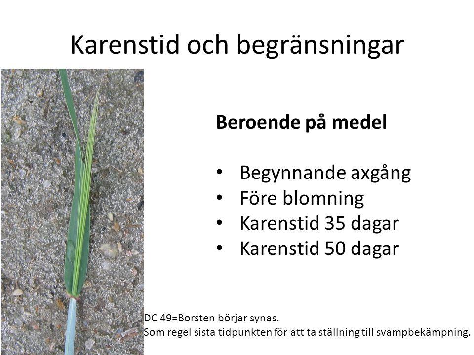Karenstid och begränsningar Beroende på medel • Begynnande axgång • Före blomning • Karenstid 35 dagar • Karenstid 50 dagar DC 49=Borsten börjar synas.