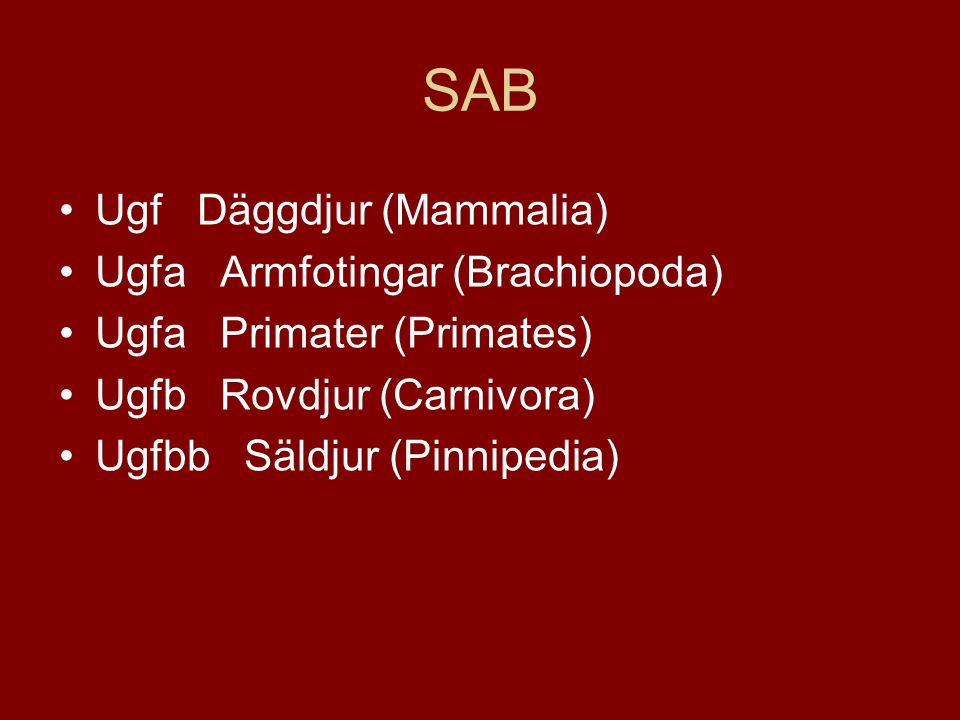 SAB •Ugf Däggdjur (Mammalia) •Ugfa Armfotingar (Brachiopoda) •Ugfa Primater (Primates) •Ugfb Rovdjur (Carnivora) •Ugfbb Säldjur (Pinnipedia)