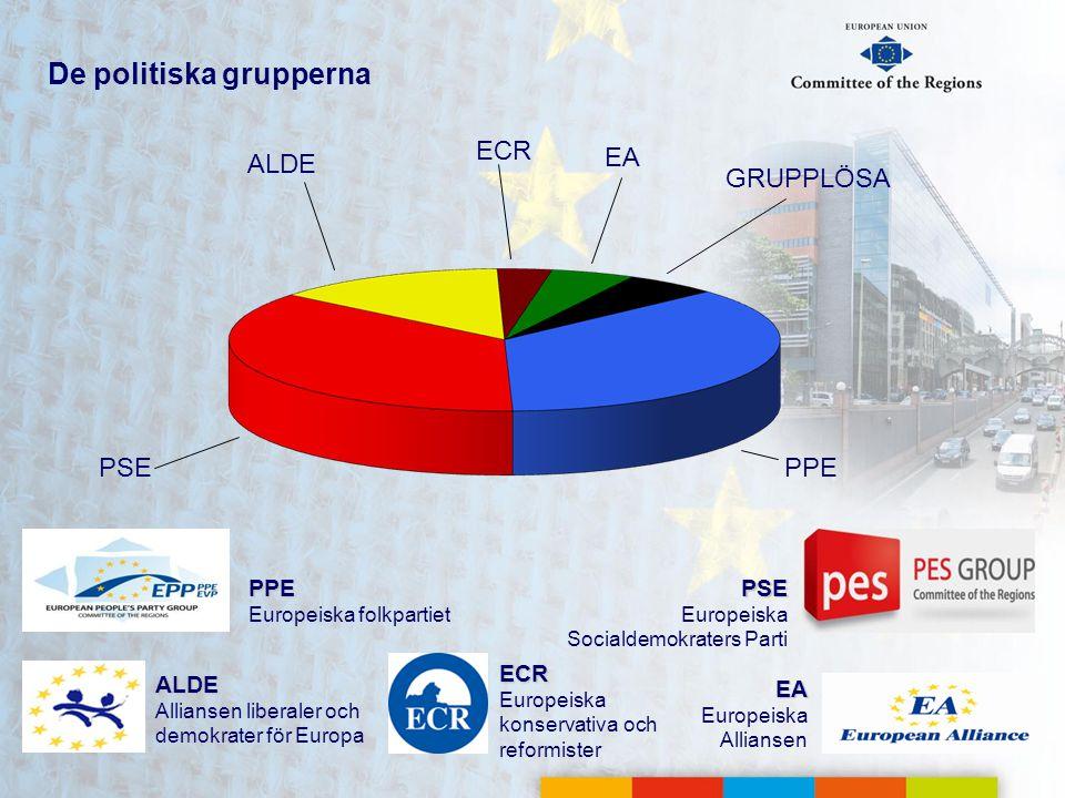 De politiska grupperna PSE Europeiska Socialdemokraters Parti EA Europeiska Alliansen PPE Europeiska folkpartiet ALDE Alliansen liberaler och demokrat