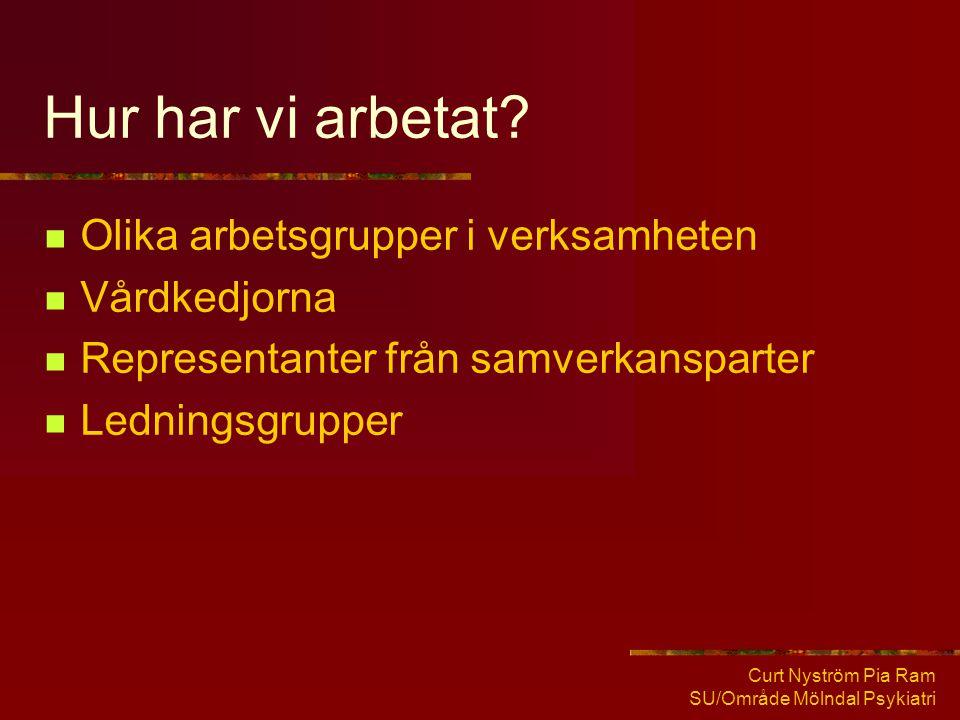 Curt Nyström Pia Ram SU/Område Mölndal Psykiatri Hur har vi arbetat?  Olika arbetsgrupper i verksamheten  Vårdkedjorna  Representanter från samverk