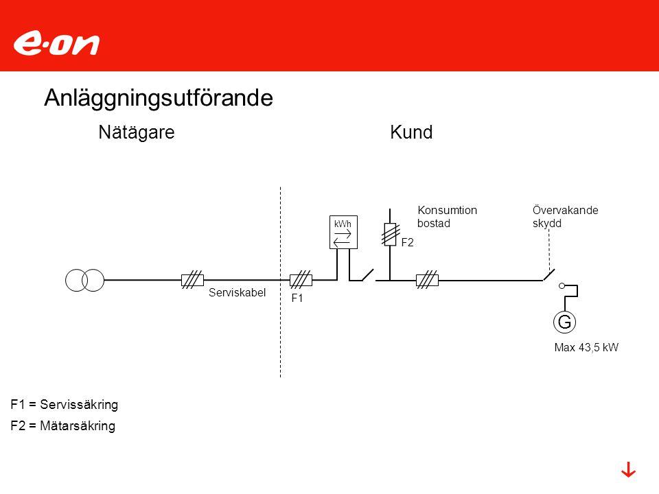 NätägareKund F1 = Servissäkring F2 = Mätarsäkring G kWh Serviskabel Konsumtion bostad F1 F2 Övervakande skydd Max 43,5 kW Anläggningsutförande