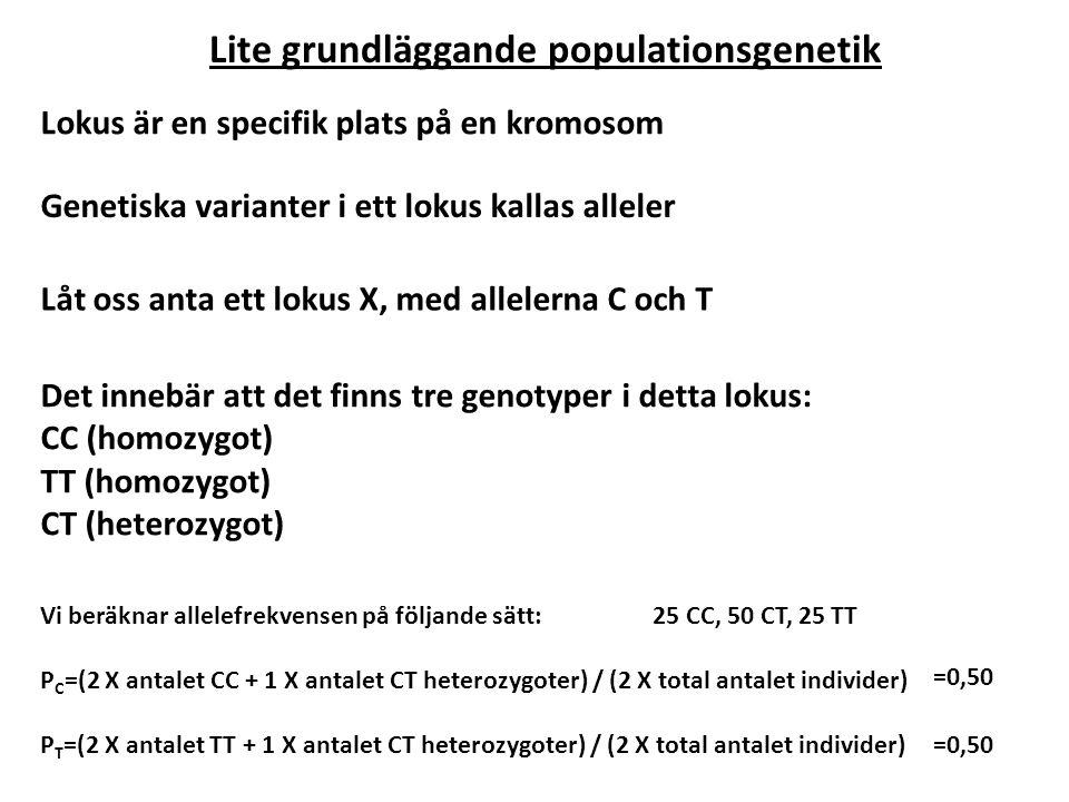 Lite grundläggande populationsgenetik Lokus är en specifik plats på en kromosom Genetiska varianter i ett lokus kallas alleler Låt oss anta ett lokus