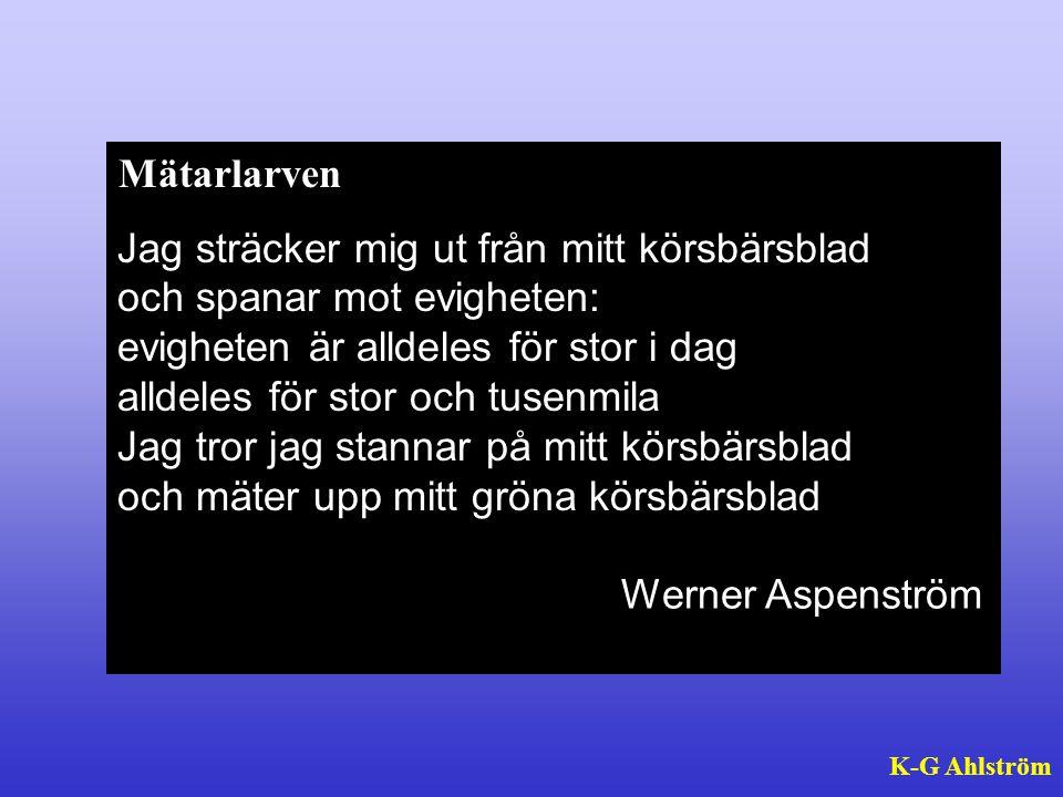 Hur fortsätta arbetet med energi? K-G Ahlström