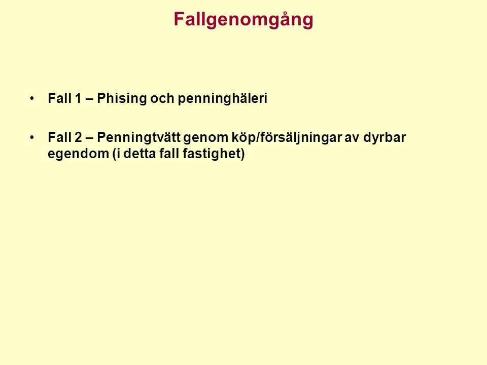 Fallgenomgång •Fall 1 – Phising och penninghäleri •Fall 2 – Penningtvätt genom köp/försäljningar av dyrbar egendom (i detta fall fastighet)