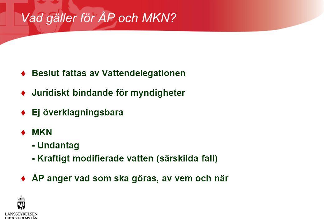Vad gäller för ÅP och MKN?  Beslut fattas av Vattendelegationen  Juridiskt bindande för myndigheter  Ej överklagningsbara  MKN - Undantag - Krafti