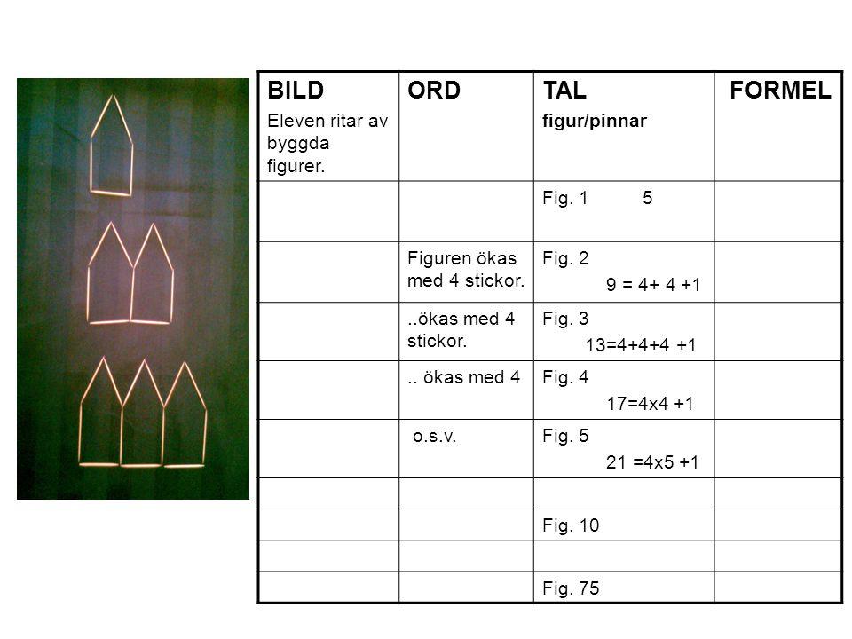BILD Eleven ritar av byggda figurer. ORD TAL figur/pinnar FORMEL Fig. 1 5 Figuren ökas med 4 stickor. Fig. 2 9 = 4+ 4 +1..ökas med 4 stickor. Fig. 3 1