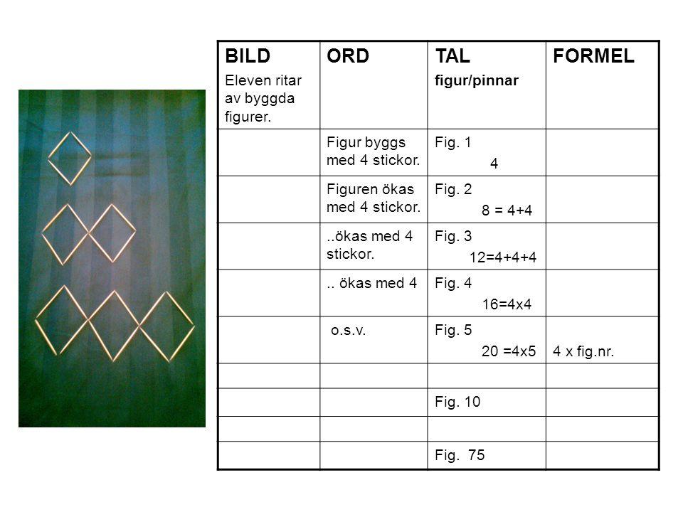BILD Eleven ritar av byggda figurer. ORD TAL figur/pinnar FORMEL Figur byggs med 4 stickor. Fig. 1 4 Figuren ökas med 4 stickor. Fig. 2 8 = 4+4..ökas